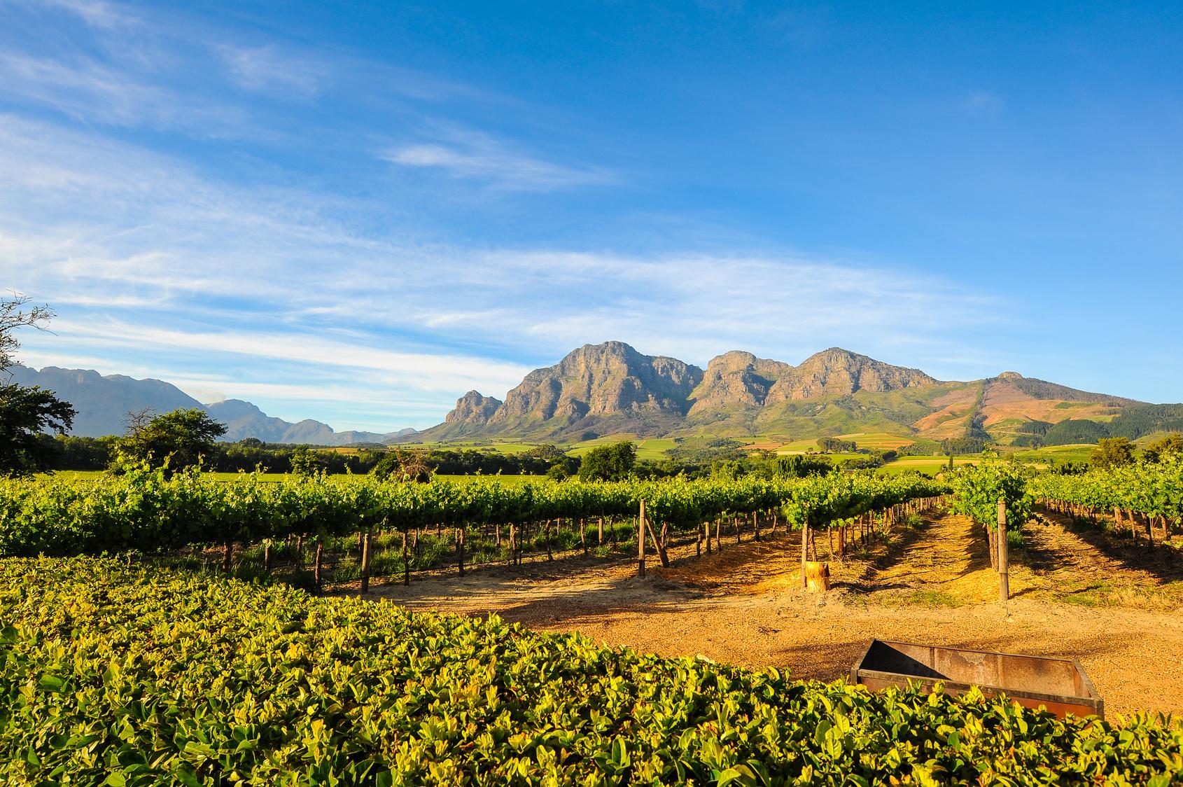 Cape Town - Fokváros- Dél - Afrika| OTP TRAVEL Utazási Iroda