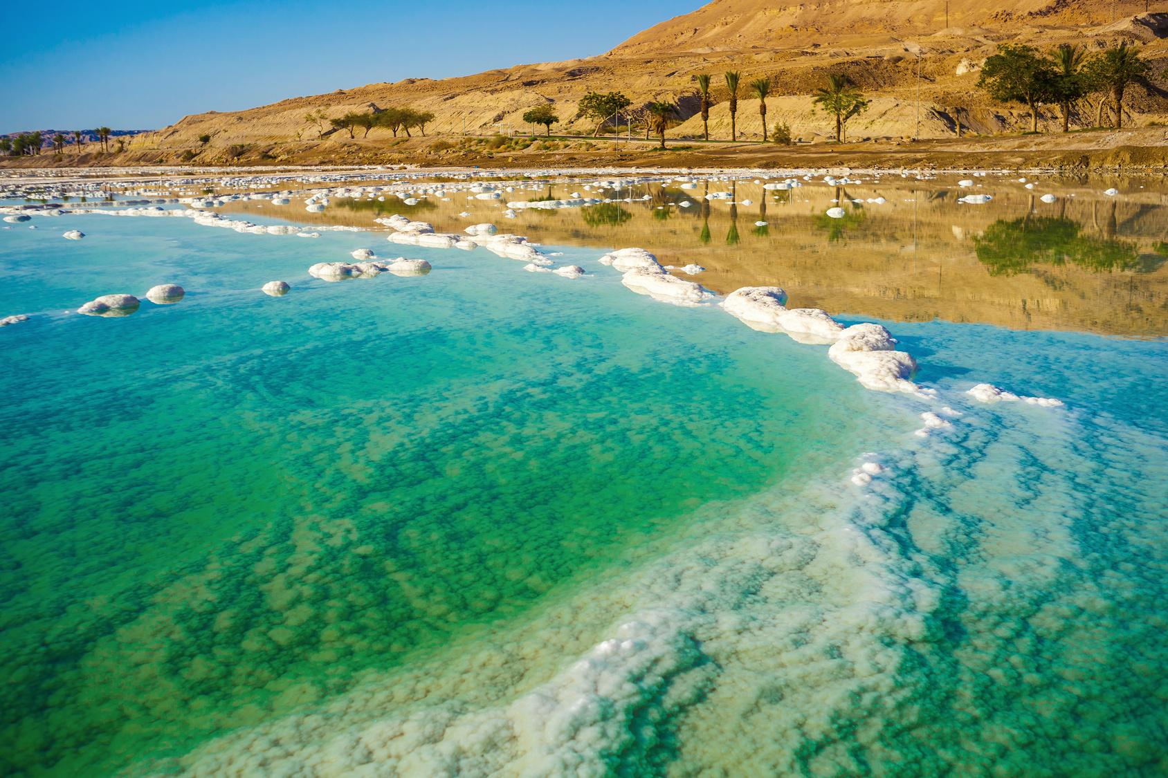 Holt tenger pikkelysömör israel