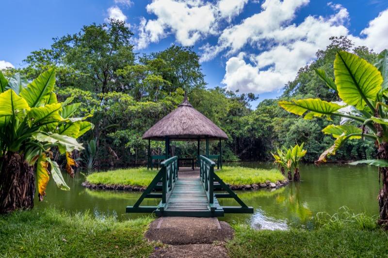 Mauritius | Sir Seewoosagur Ramgoolam botanikuskert - OTP Travel Utazási Iroda