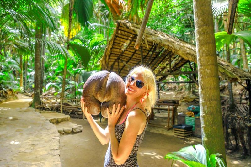 Seychelle-szigetek | coco de mer - OTP Travel Utazási Iroda