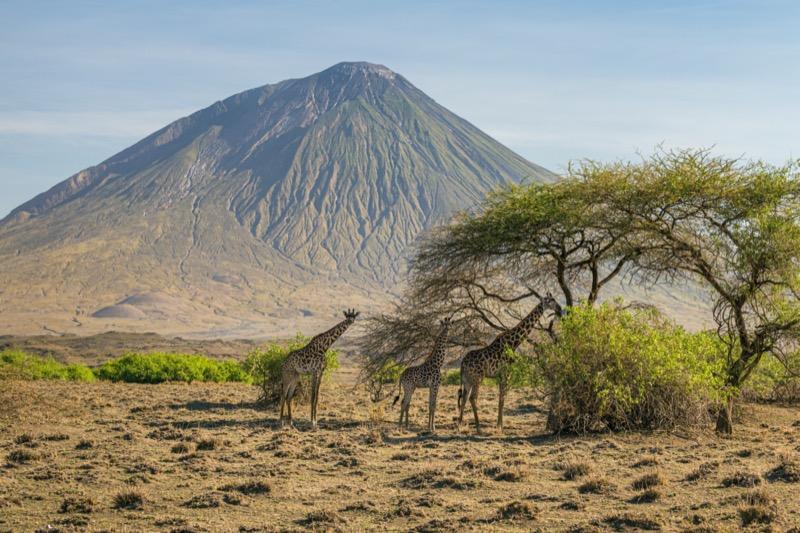 Tanzánia | Natron-tó - OTP Travel Utazási Iroda