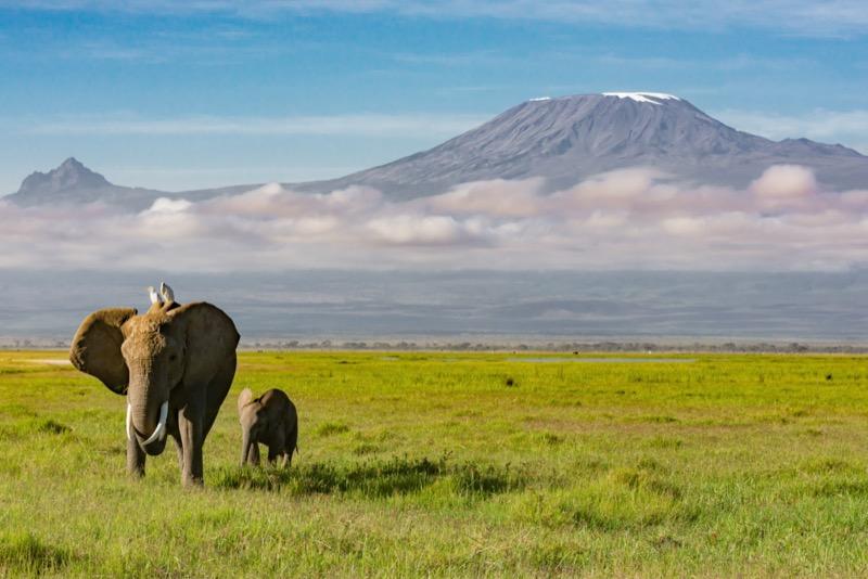 Tanzánia | Kilimandzsáró - OTP Travel Utazási Iroda
