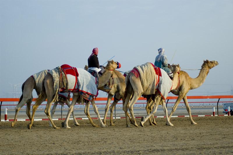 Dubai | teveverseny - OTP Travel Utazási Iroda