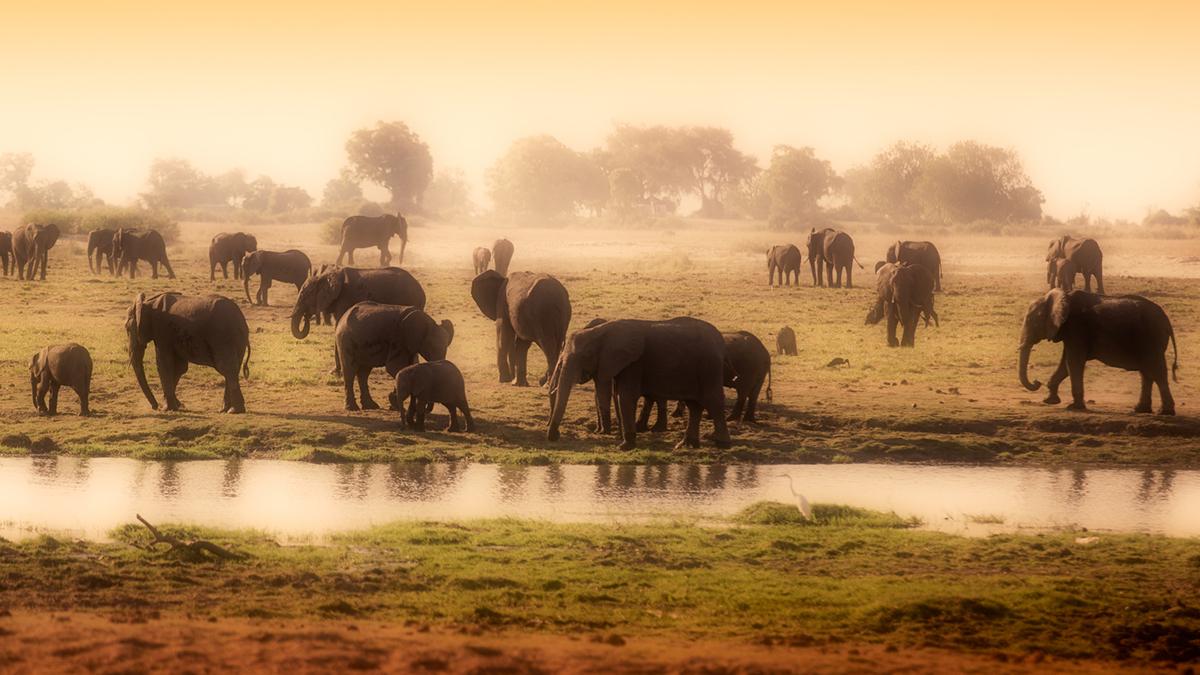 Afrika - UTAZÁS | OTP TRAVEL Utazási Iroda